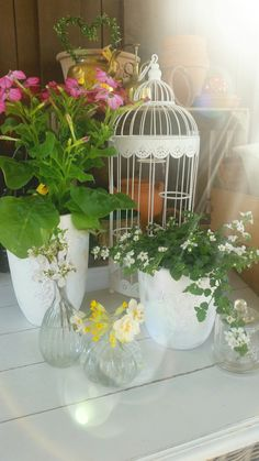 summerflowers and second hand pots and vases..