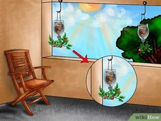 Several benefits lie in growing tomato plants upside down. Marvelous Benefits of Growing Tomatoes Upside Down Ideas. Growing Tomatoes Indoors, Tips For Growing Tomatoes, Types Of Tomatoes, Growing Tomato Plants, Varieties Of Tomatoes, Growing Tomatoes In Containers, Grow Tomatoes, Dried Tomatoes, Cherry Tomatoes