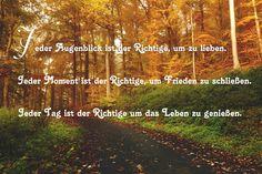 Bigis Schatzkiste – Google+