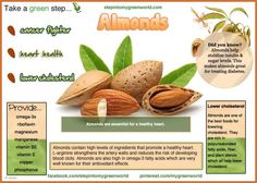 Almond Milk Health Benefits - Bing Images