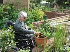 Rolling dates ENFIELD MIDDLESEX Capel Manor College Social and Therapeutic Horticulture Course. From the gardening courses board Enfield Middlesex, Creative Arts Therapy, Manor Garden, Gardening Courses, Horticulture, College, Landscape, Outdoor Decor, Plants
