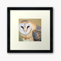 Centerpiece Decorations, Custom Boxes, Framed Art Prints, My Arts, Bird, Printed, Awesome, Artist, Shop