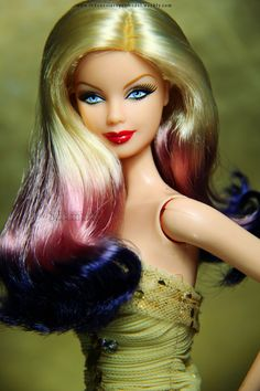 Ombre Hair Barbie Doll