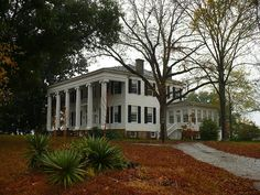 Thornhill Plantation ~ Forkland, Alabama ~ built in 1833 for James Innes Thornton. Thornton practiced law in Huntsville then served as Alabama's third secretary of state. County Road 19, Forkland, Greene County, AL