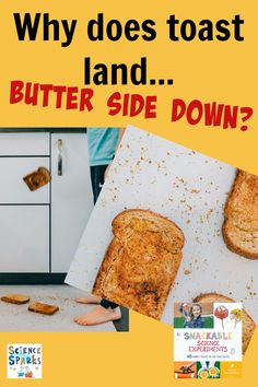 Find out why toast lands butter side down in this easy science investigation for kids. Great kitchen sciencep roject too Science Tricks, Easy Science, Science Experiments Kids, Science For Kids, How To Make Meringue, Kitchen Science, Types Of Bread, Early Childhood, Landing