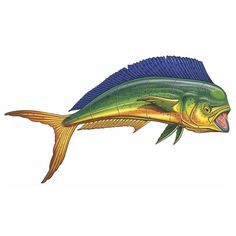 Our handcrafted Mahi Mahi Straight pool mosaic will add a creative touch to your new or refinished swimming pool. Fish Pool, Swimming Pool Mosaics, Mahi Fish, Mahi Mahi, Fish Wood Carving, Ocean Pictures, Underwater Art, Water Animals, Best Fishing