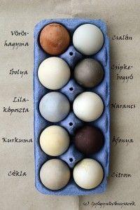 Természetes tojásfestés gyógynövényekkel