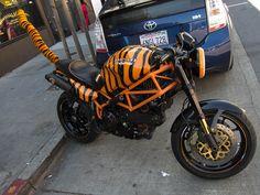 Ducati Tigre by Scott Beale