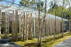 Image 1 of 7 from gallery of Birch Moss Chapel / Kengo Kuma and Associates. Photograph by Kengo Kuma and Associates Karuizawa, Kengo Kuma, Wood Architecture, Japanese Architecture, Architecture Details, Chapelle, Pergola Kits, Pergola Garden, Autocad