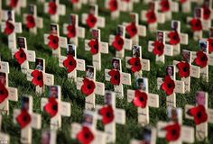 Crosses with pictures of servicemen killed in Afganistan during the conflict in the Poppyscotland Field of Remembrance next to the Scott Monument in Edinburgh Wales, Scott Monument, Remembrance Day Poppy, Remember The Fallen, Armistice Day, Rule Britannia, England, National Holidays, Tower Of London