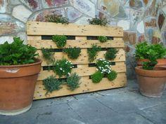 Jardí vertical amb pelet, de plantes perennes. Reciclatge
