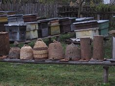 OK...bee dwellings, but dwellings none the less...collection of bee skeps and hives