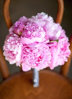 PINK and beautiful. Pic by Annie McElwain Photography