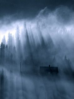 breaking thru Photo by Fred Strømme — National Geographic Your Shot