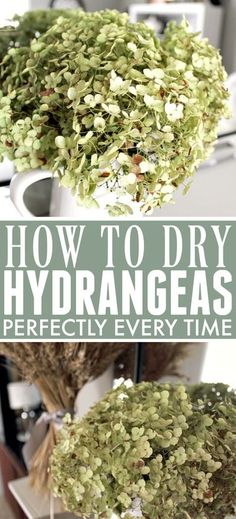 How to Dry Hydrangeas Perfectly Every Time | The Creek Line House Hydrangea Arrangements, Beautiful Flower Arrangements, Beautiful Flowers, Vegan Kitchen, Kitchen Recipes, Hydrangea Not Blooming, Dried Flowers, Cut Flowers, Decoration Table