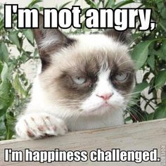 I'm happiness challenged