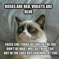grumpy cat valentines day quotes
