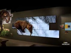 National Geographic Museum                                                                                                                                                      More