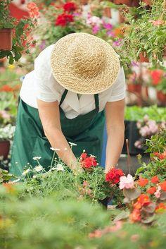 Grandmas Garden, Garden Shop, Flower Farm, Photos Of Women, Around The Worlds, Nursery, The Unit, Stock Photos, Flowers