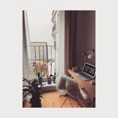 "Derya Talay (@deryacetin) on Instagram: ""favorite spot #home #berlin #GuardianBerlin #berliner #homeoffice #metime #floweraddict #peace…"""
