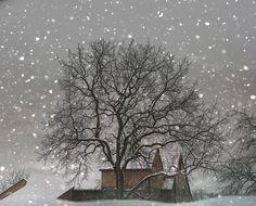 Winter Photography, white, tree, barn, snow, winter home decor Snow Barn fine art photography print 8x10. , via Etsy.