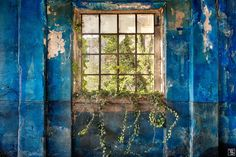 As German photographer Sven Fennema captures dilapidated castles, abandoned palaces and decayed churches, I can't help but wonder how these once impressive buildings have come to be forgotten. Whatever fate lies ahead for these spaces, it's nice to see that their beauty will forever be restored through Sven's photographs. [so many gorg photos i had a hard time picking one for the pin. -jl-]