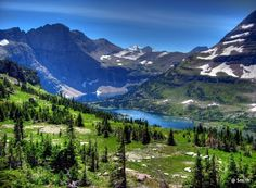 Logan Pass, Glacier National Park, Montana       We have been here. Its beautiful beyond words....