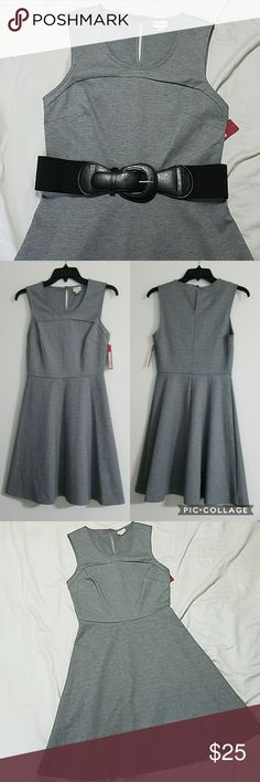 🆕 Gray Skater Dress NWT Gray skater dress. Button closure  Body: 76% polyester, 20% rayon, 4% spandex Woven: 100% polyester Machine washable, gentle cycle Merona Dresses