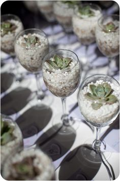 Perfect for wedding favors!