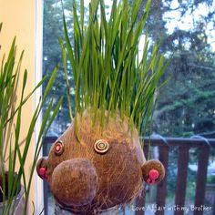 bricolage enfants herbe + collants