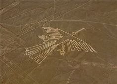 Nazca Lines in Peru were created by the Nazca culture between 400 and 650 AD.[1] The hundreds of individual figures range in complexity from simple lines to stylized hummingbirds, spiders, monkeys, fish, sharks, orcas, and lizards.