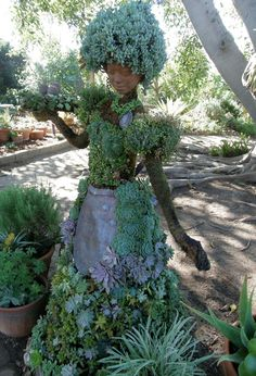 an interesting use of succulents!  Show the neighbors something ya just don't see everyday, try this at home.