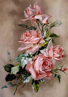 Imprimir barco gratis col rosas Catalina Klein CP65 la mitad de la yarda de largo