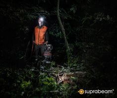 Professional flashlights and headlamps Outdoor Pictures, Hunting, Dogs, Doggies, Fighter Jets, Pet Dogs, Dog