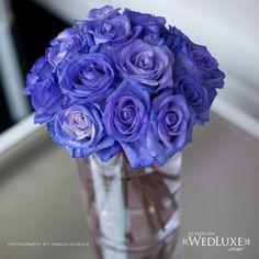 indigo roses Bridal Bouquet Blue, Blue Wedding Flowers, Blue Bridal, Wedding Bouquets, Wedding Themes, Wedding Events, Wedding Ideas, Weddings, Wedding Proposals