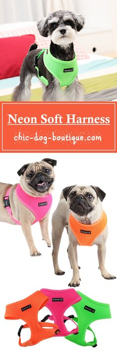 The best-selling Puppia Soft Harness is now available in three new bright neon colors - orange, pink and green! These neon harnesses are made of the same quality polyester air-mesh material that catapulted the Puppia brand to the top of the pet industry many years ago. The harness slips over the dog's head and then secures with an adjustable chest belt and quick-release buckle creating a comfy fit for the dog.
