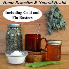 Over 50 Natural Health and Home Remedy posts from Common Sense Homesteading.  Easy, inexpensive.  Cold and Flu Remedies, Women's Health, General Wellness.