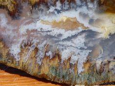 TCR SAGE PLUME AGATE/JASPER/LAPIDARY/CABBING SLAB EXTRORDINARY COLORS! 133 GRAMS #Rough