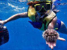 10 top snorkeling locations