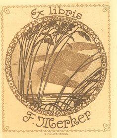 Gravure sur cuivre , 20° , SUISSE  MÜLLER-BRUGG (Gottlieb)