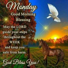 I pray that you have a safe and blessed day! Monday Blessings, Morning Blessings, Good Morning Wishes, Good Morning Quotes, Monday Morning Greetings, Happy Monday Morning, Happy Saturday, Morning Inspirational Quotes, Inspirational Message