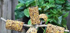 Homemade Bird Feeders 17