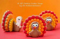 3D Turkey Cookies