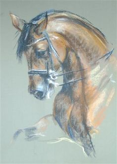 pastel drawing http://www.cathdriessen.nl/galerie/paarden https://www.facebook.com/pages/Cath/447137662037857