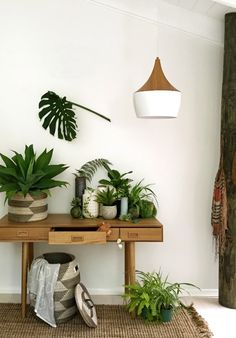 Entry hall makeover: Decorating with indoor plants, via we-are-scout.com.