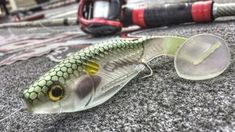 Russ Lane gives his quick tip on rigging a split belly swimbait with any size weight you prefer to cut down on short strikes. Fishing Rigs, Bass Fishing Tips, Fishing Knots, Carp Fishing, Best Fishing, Trout Fishing, Fishing Tackle, Fishing Hole, Pike Fishing