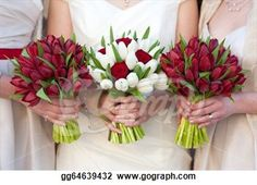 Really love the red and white tulip and rose wedding bouquets...even just red and white tulips would be stunning