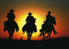 Three night riders.