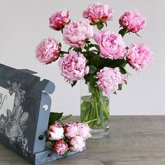 Our Letterbox Peonies have arrived! The nations most popular celebrated stems. Bursting with an abundance of soft fluffy pink petals and oodles of feminine charm.