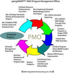 PMO Overview: goingsmart™